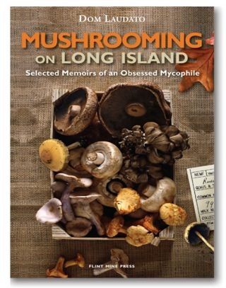 mushrooming2